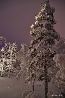 Лапландия 27-29.01.14. от Немодного