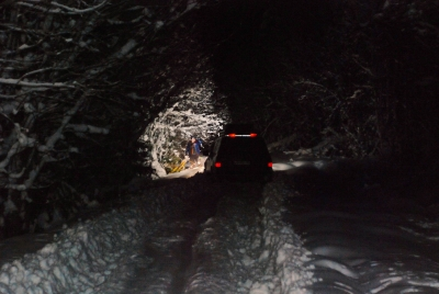 Новогодняя поездка в Чухлому. 2-6 января 2015 от Ленчик
