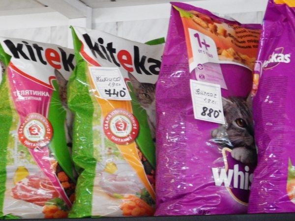 Интересно, есть кто-то в Хатанге, кто кормит кошку вискасом?