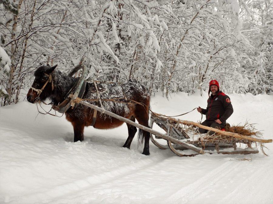 Мы тоже попробовали на нем поездить по снегу. Отличная проходимость!