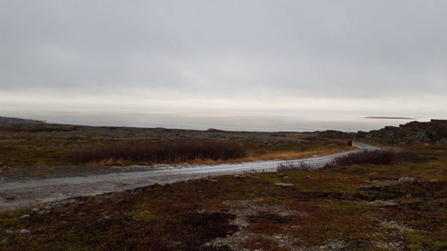 Западный берег Рыбачьего п-ва.