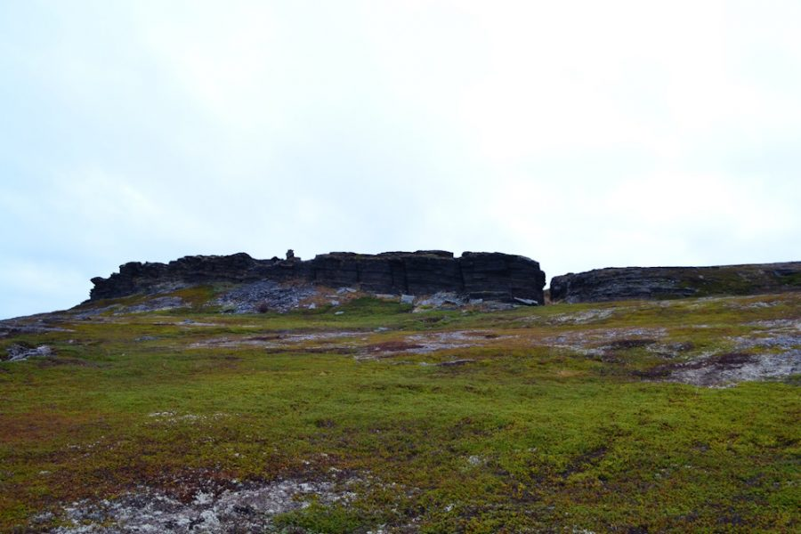 Скалы, мхи и камни.